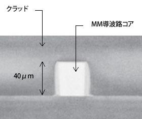 直接露光法による導波路作製例