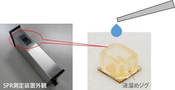 バッチ法による検量線測定
