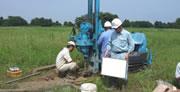 土壌試料採取の様子
