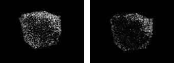 指紋の汚れ評価