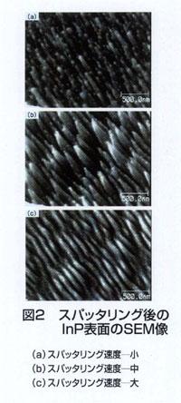 スパッタリング後のInP表面のSEM像