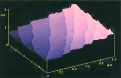 AFM(原子間力顕微鏡)高さ校正用標準試料