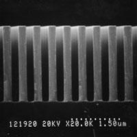 最外周部のSEM像: Ta吸収体膜厚2.5μm