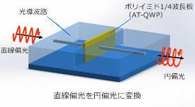 直線偏光を円偏光に変換