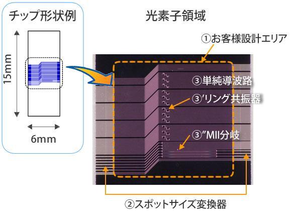 ベーシックなシリコン導波路回路の試作チップ製作例
