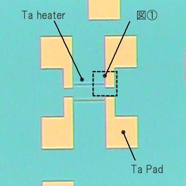 石英(オーバークラッド)上のTaヒーターパタン加工例