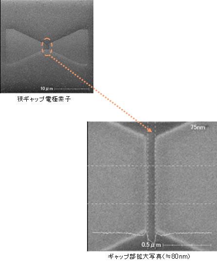狭ギャップ電極構造(ギャップ間隔:約80nm)